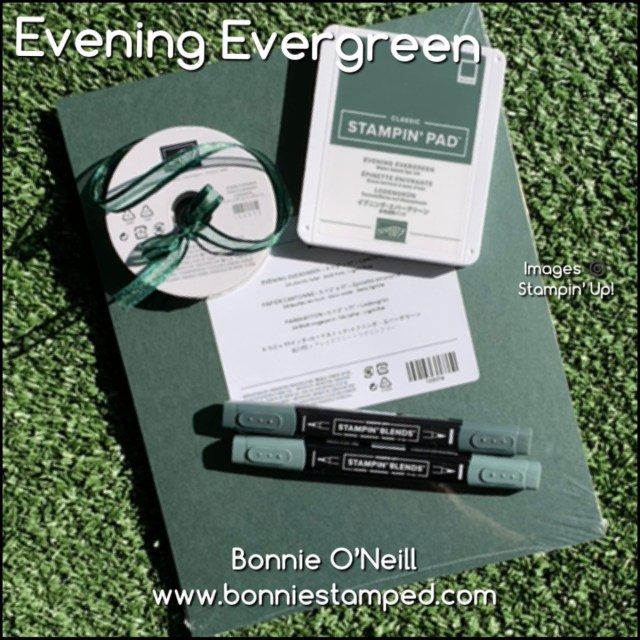 Evening Everygreen