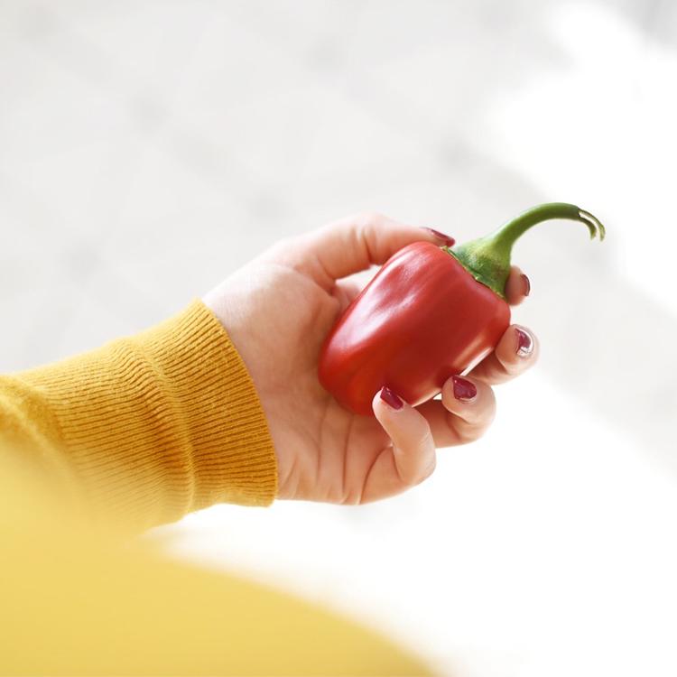 Gekaufte-Paprika-Pflanze-ziehen