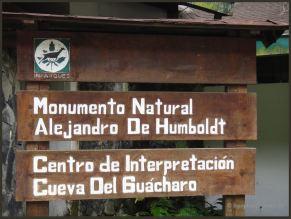 2010 Venezuela 15