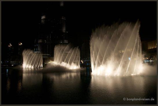 2011 Dubai 66
