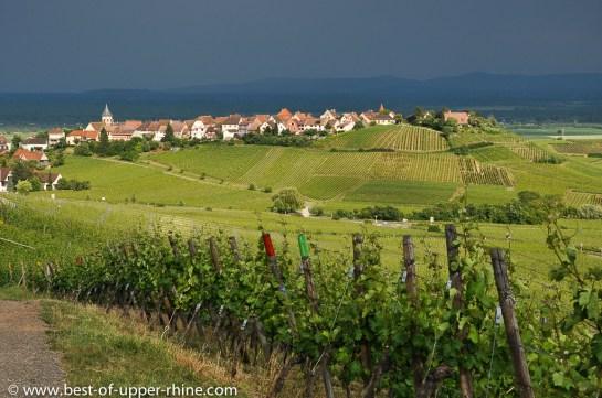 Le village de Zellenberg