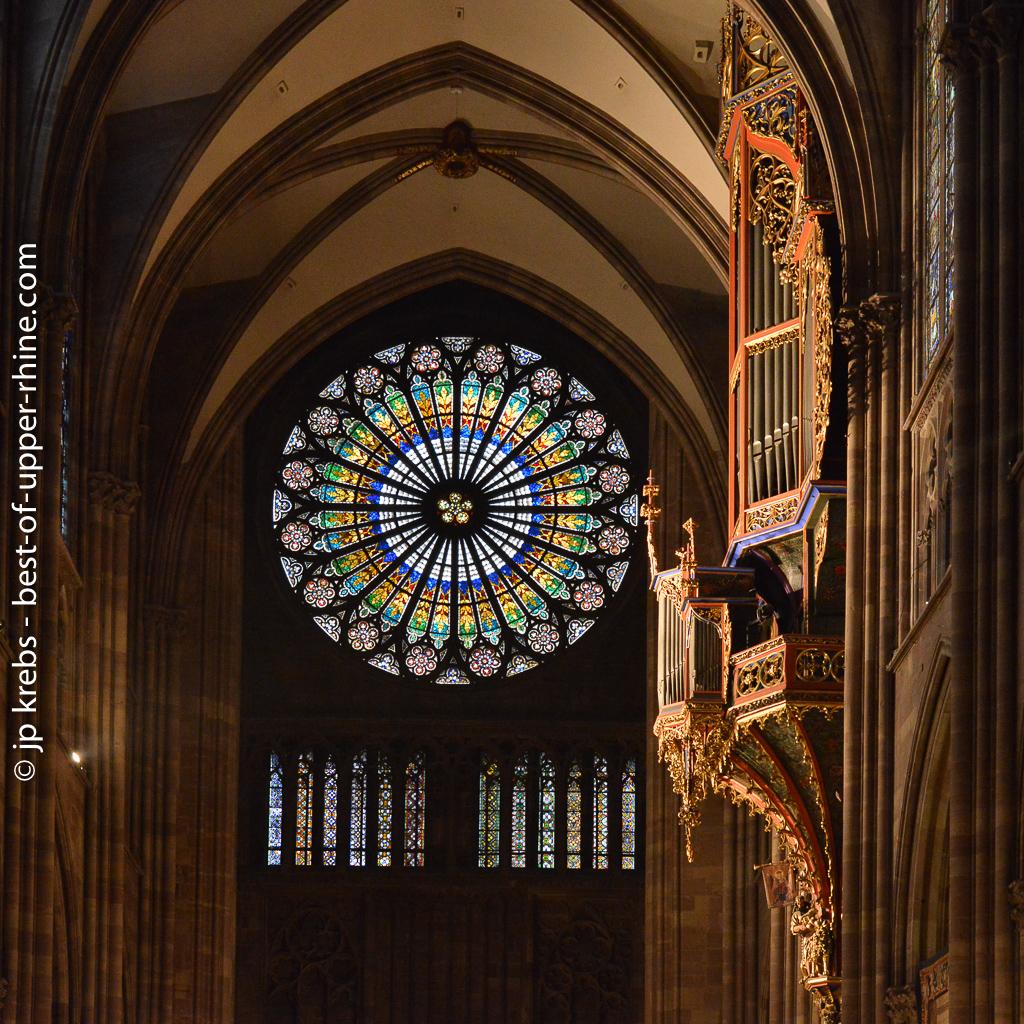 Rosace et orgue en nid d'hirondelle. Cathédrale de Strasbourg.