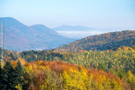 Panorama vers La Vancelle depuis le Petit Haut entre Sainte-Marie et Ribeauvillé.