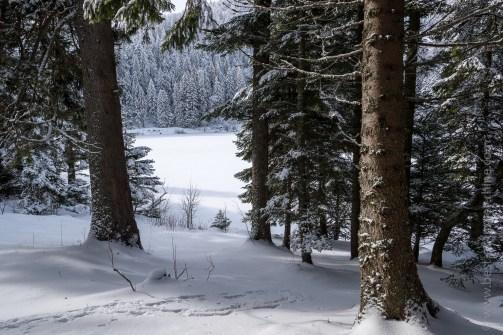 Le lac Vert en hiver