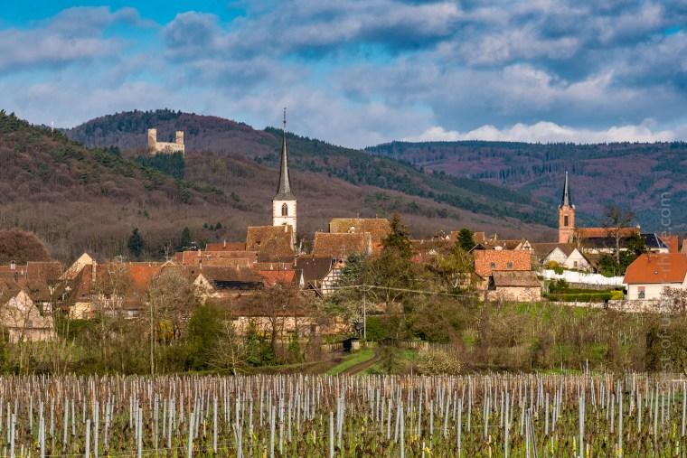 Mittelbergheim un matin de printemps.