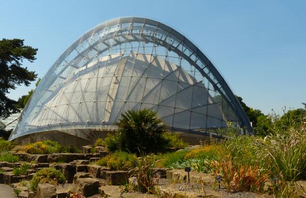 Kew-gardens-davies-alpine-house