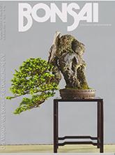 Ausgabe 162 2. Quartal 2019