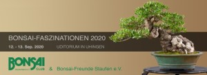 BCD - Bonsai-Faszinationen 2020