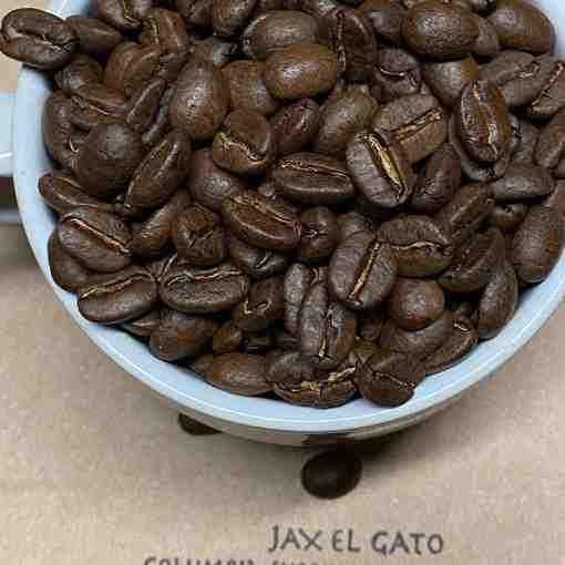 Jax El Gato coffee Bonsai Beans