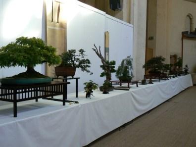 2010 -expo saint remi - 006