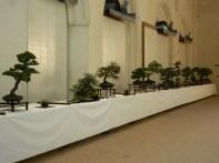 2010 -expo saint remi - 007
