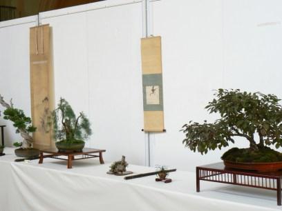 2010 -expo saint remi - 012