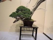 Kokufu Ten 2013 JS (3)