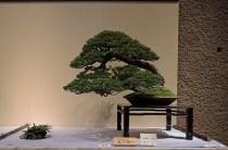 Kokufu Ten 2013 JS (44)