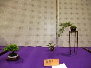 Koujitukai _Tokujyukai joint exhibition (20)