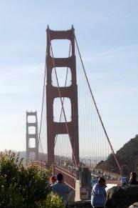 San Francisco | Bonsai Hewes