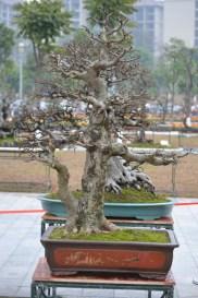 Guangzhou penjingi exposition 021