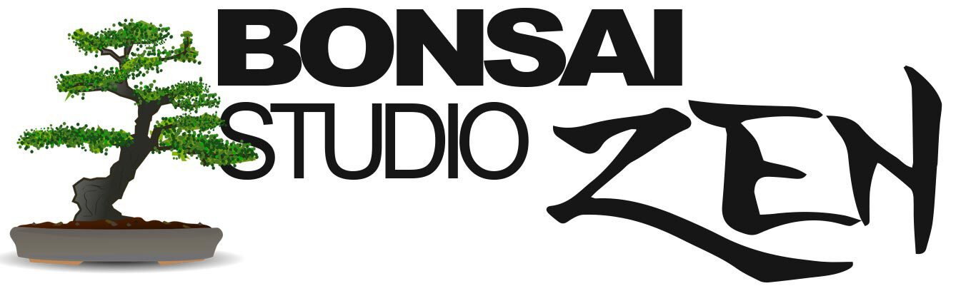 Bonsai Studio Zen