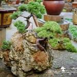 [附石]創作的樂趣在於,發想、收集、執行和實現。