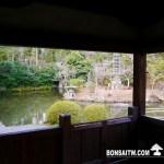 [日本庭園]清涼寺(1)