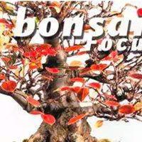 Bonsai magasiner (Magazines)