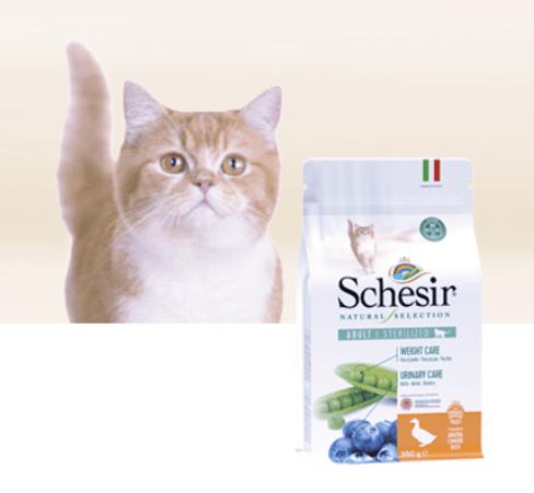 Read more about the article Test Alimentation Schesir Natural Selection pour chats stérilisés.