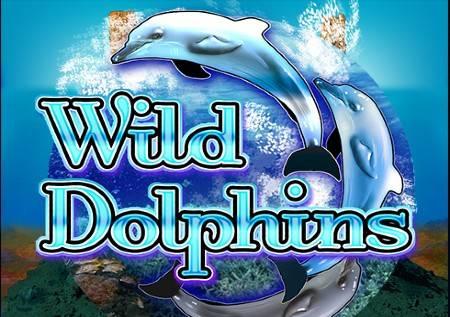 Wild Dolphins – istraži morske dubine i pokupi blago