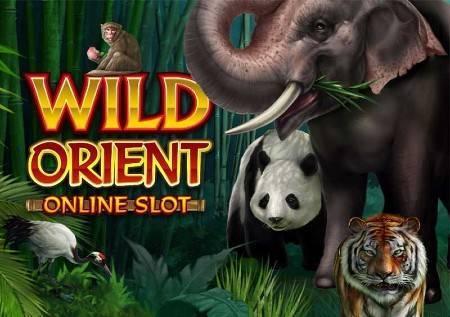 Wild Orient – kazino igra vas vodi u carstvo džungle!