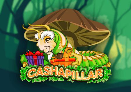 Cashapillar – gusjenice donose bonuse!