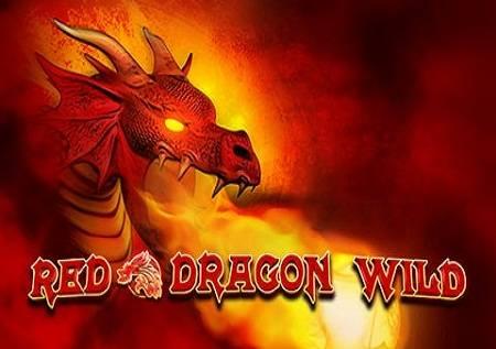 Red Dragon Wild – borbena slot igra!
