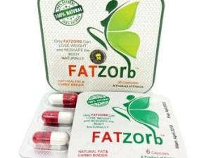FATZOrb для похудения купить