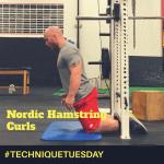 nordic hamstring curls