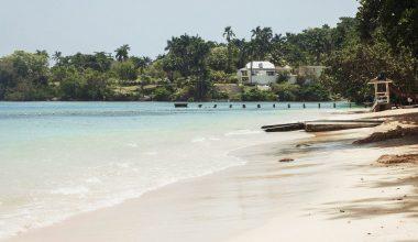 photo of beach during daytime