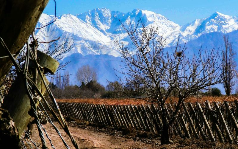 brown wooden fence near snow covered mountain during daytime