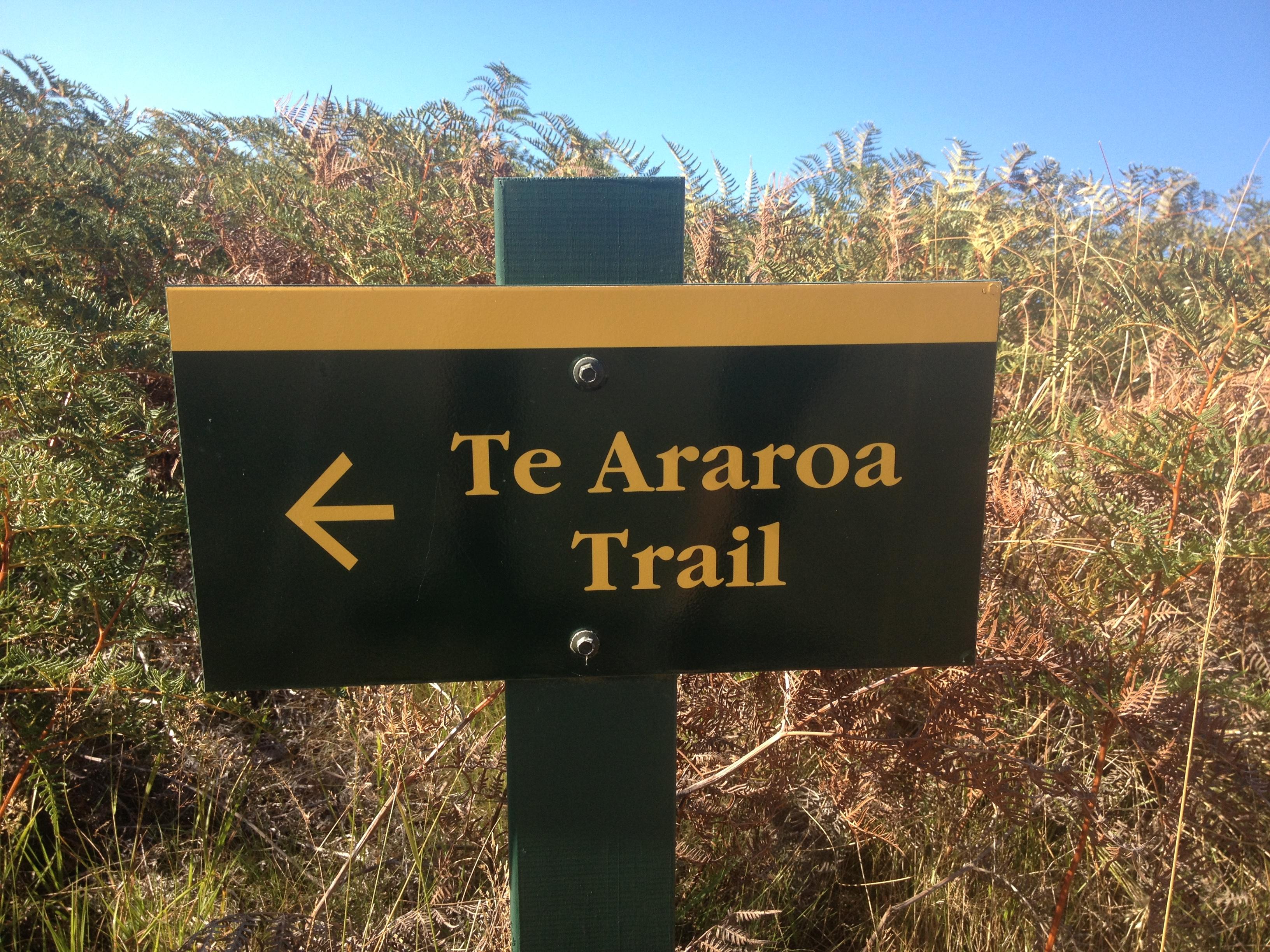 araroa trail