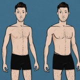 Ectomorph Aesthetics (Full Article)
