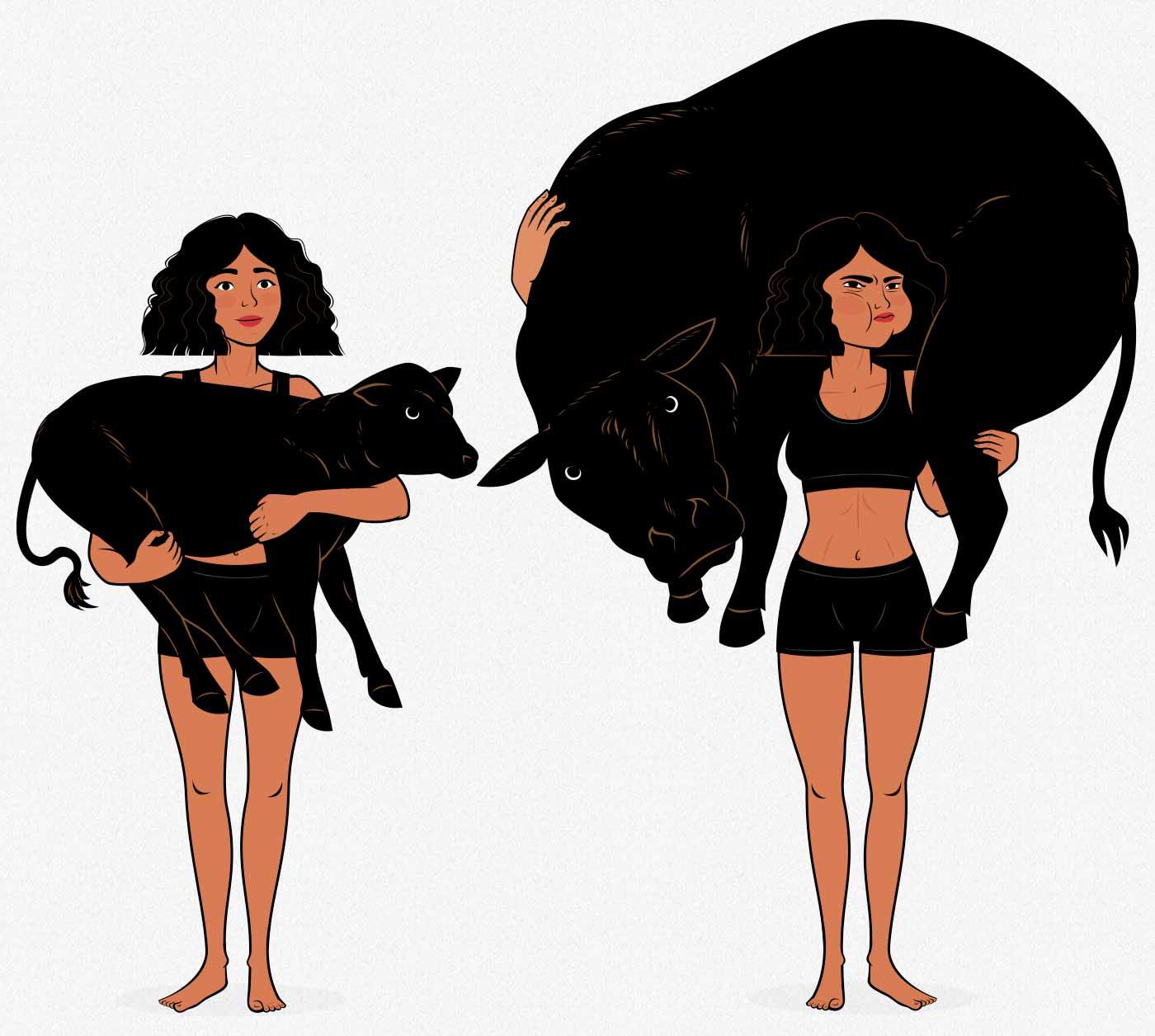Illustration of a woman lifting a bull, illustrating the principle of progressive overload.