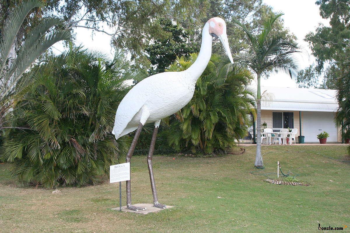 Big Brolga de Townsville