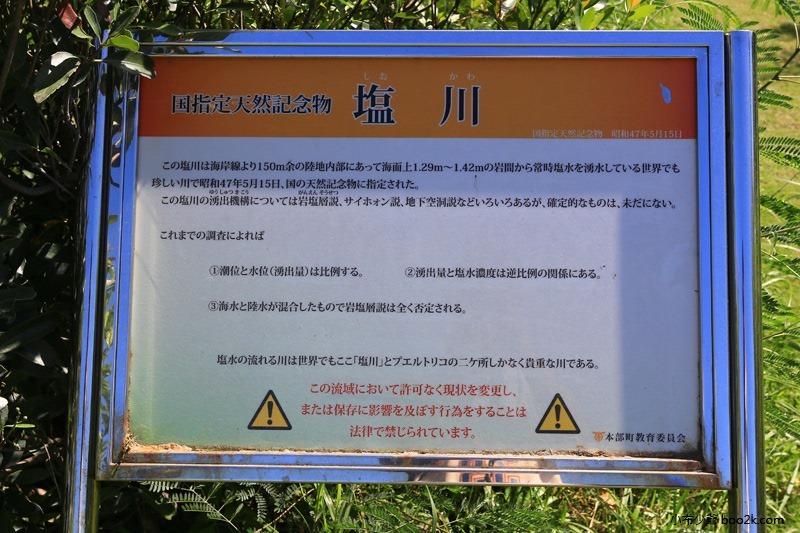 ▌沖繩景點 ▌鹽川 國家天然紀念物,日本唯一的鹹水河川、世界唯二稀有河流