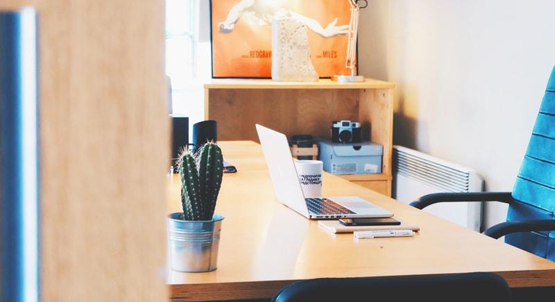 cactussen in je huis en werkruimte