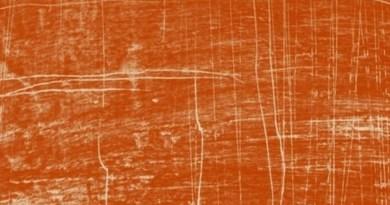 Aux origines, l'archéologie : une science dans le débat public