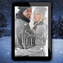 Promo Graphic - Snow Effect by Dena Garson - 2