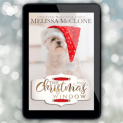 Promo Graphic - The Christmas Window by Melissa McClone - 1