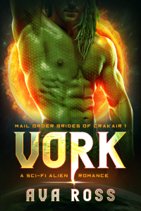 Book Cover: Vork