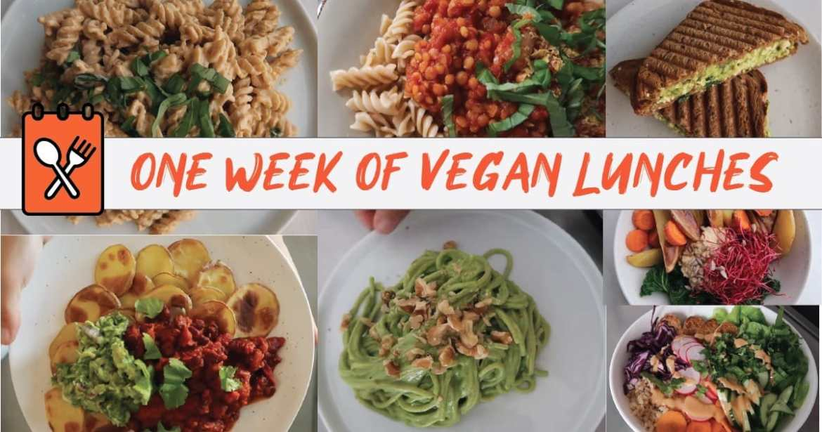 One Week of VEGAN LUNCHES