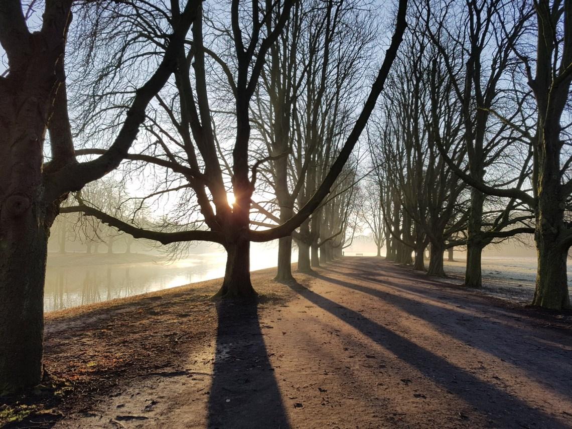 Laufen in Köln am Decksteiner Weiher