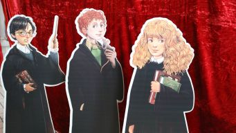 Harry, Ron und Hermine im neuen Design von Iacopo Bruno
