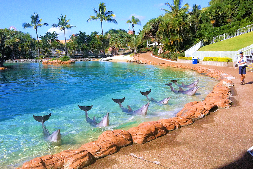 Seaworld Directions Gold Coast The Best Sea Of 2018