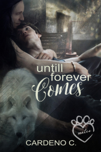 Guest Review: Until Forever Comes by Cardeno C.