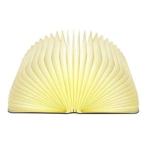 Image of Open Book Lamp